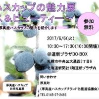 厚真産ハスカップの魅力展~北海道新聞(どうしんDO-BOX)