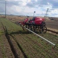麦に除草剤散布