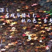 秋深し名残り惜しむ秋の色