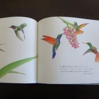 『宮沢賢治の鳥』(国松俊英文・舘野鴻画・岩崎書店)
