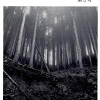 『木想』 第5号を読んで
