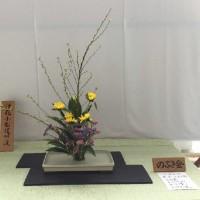 2017年4月9日の花