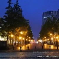 札幌夜景散策☆大通公園からテレビ塔、道庁赤レンガ
