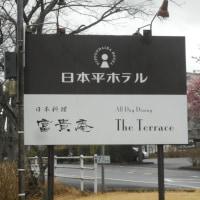 イノセンテ!春の定番カットソー(*^_^*)