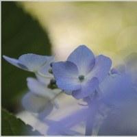 八景ブルー
