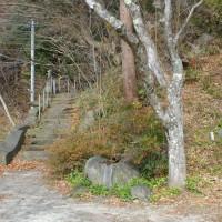 福島県いわき市、下桶売東松院のモミ群です!!