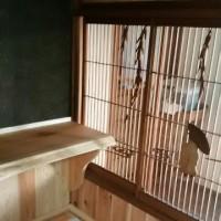 街家カフェ 木・木 COCOの客室 床の間カウンター完成です