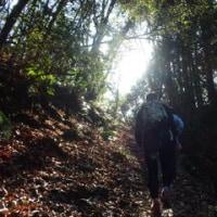南高尾裏高尾氷の花2017初トレイル