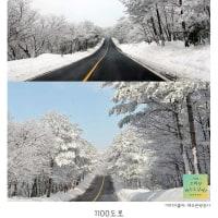 尹東柱の詩10.「雪降る地図」バイリンガル