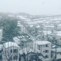 雪の日 講習会❄️