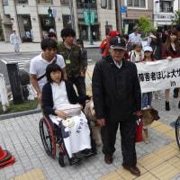 全国身体障害者ほじょ犬サミット2015 in 松本