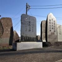 井野・梵天塚の桜