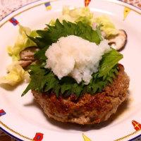 鴨南蛮蕎麦&おろしハンバーグ