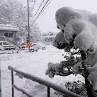 秩父は大雪です。