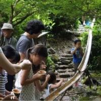 わんぱく自然探検隊 6月・7月 親子ふれあいイベント 決定!