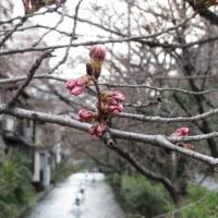 春は もうすぐ