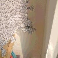 おばあちゃんの暖簾
