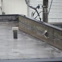 今朝(6月28日)の東京のお天気:小雨、6月(後半)の作品:寄り添う二人