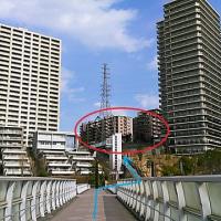東京マラソン ~ 家探しへ