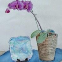 胡蝶蘭に飾り皿(教室にて)