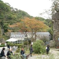 大谷資料館(大谷石採石場跡)