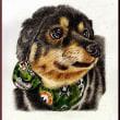 色鉛筆画363 (犬)