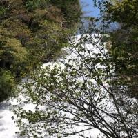 湯の湖から丸沼高原へ