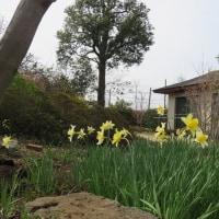 お庭の一部改造
