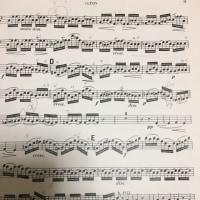 弾けないと足手まとい、弾けても、、、