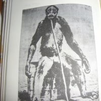 人類は何かを知っているのだ、だが何を?・・ナスカ・イカの線刻石の研究史(6)