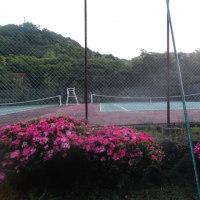 早朝の「けやき公園」