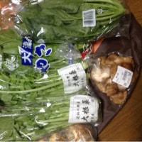 お野菜を買いました