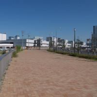 豊洲新市場 6街区(水産仲卸売場棟)の進捗状況 2016年10月15日