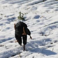 ちょっと前の雪遊びの話