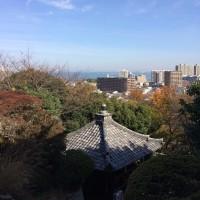 三井寺観音堂より湖畔を望む