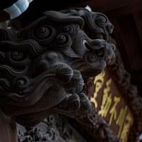 6月13日G散歩(爺散歩)で神谷町(愛宕山)カッパ橋、浅草、最後に深川の富岡八幡宮までお散歩しました。