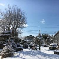 故郷便りー雪が止んで青空が!