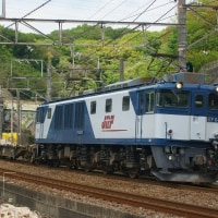 2017年4月24日  東海道貨物線  東戸塚  EF64-1010   3075レ
