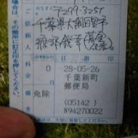熊本地震、救援募金。