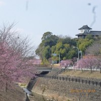 3月9日(記念切手記念日)