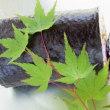 スーパーフード・キヌアのカラフル巻き寿司(^^♪
