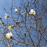 4/19(水)のイキメンニュース~暮らし&身近な法律・判例の情報