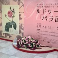バラ図譜展
