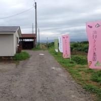 北村くらた農園