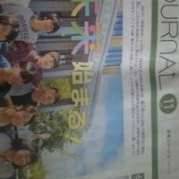 8・未来ジャ-ナル新聞・孫のために