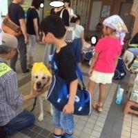 エコール真美で募金活動2(おうちCafeわんこ堂)