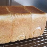 あこ酵母・角食パン
