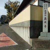 大イチョウのあるお寺へ