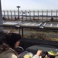 千葉のおばさんに会いに出かけました。