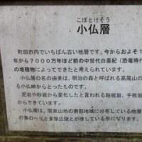 """境川源流から草戸山へ・・・""""ライド&まさかのトレラン""""?!"""